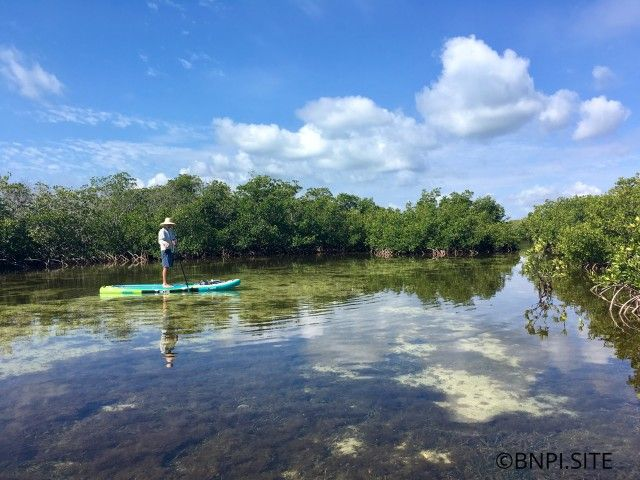 Biscayne National Park Institute: $5 Off Paddle Jones Lagoon