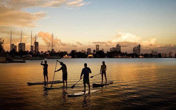 stand up paddleboarders at sunset