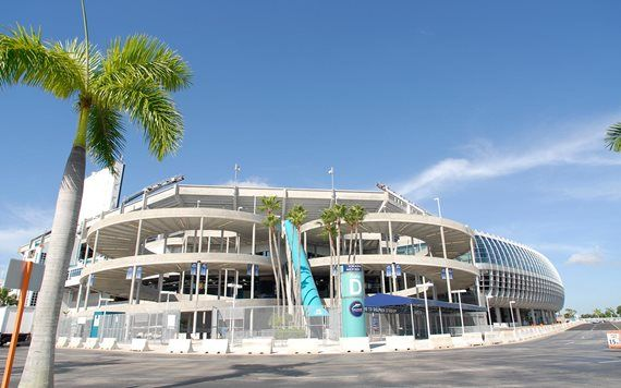 Come check out the Miami Dolphins
