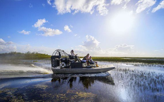 airboat glides through the Everglades