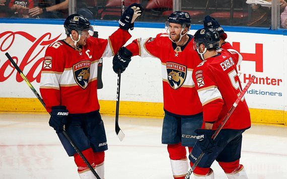 Florida Panthers, photo by Eliot J. Schechter