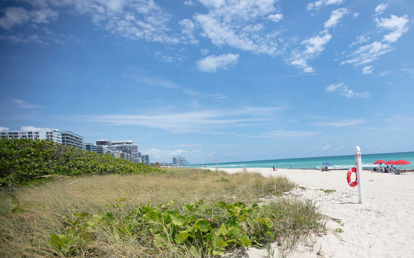 The Best Things to Do in Surfside